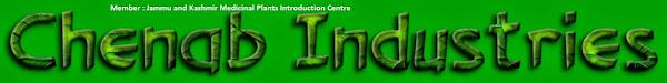 Chenab Industries Kashmir (CIK)