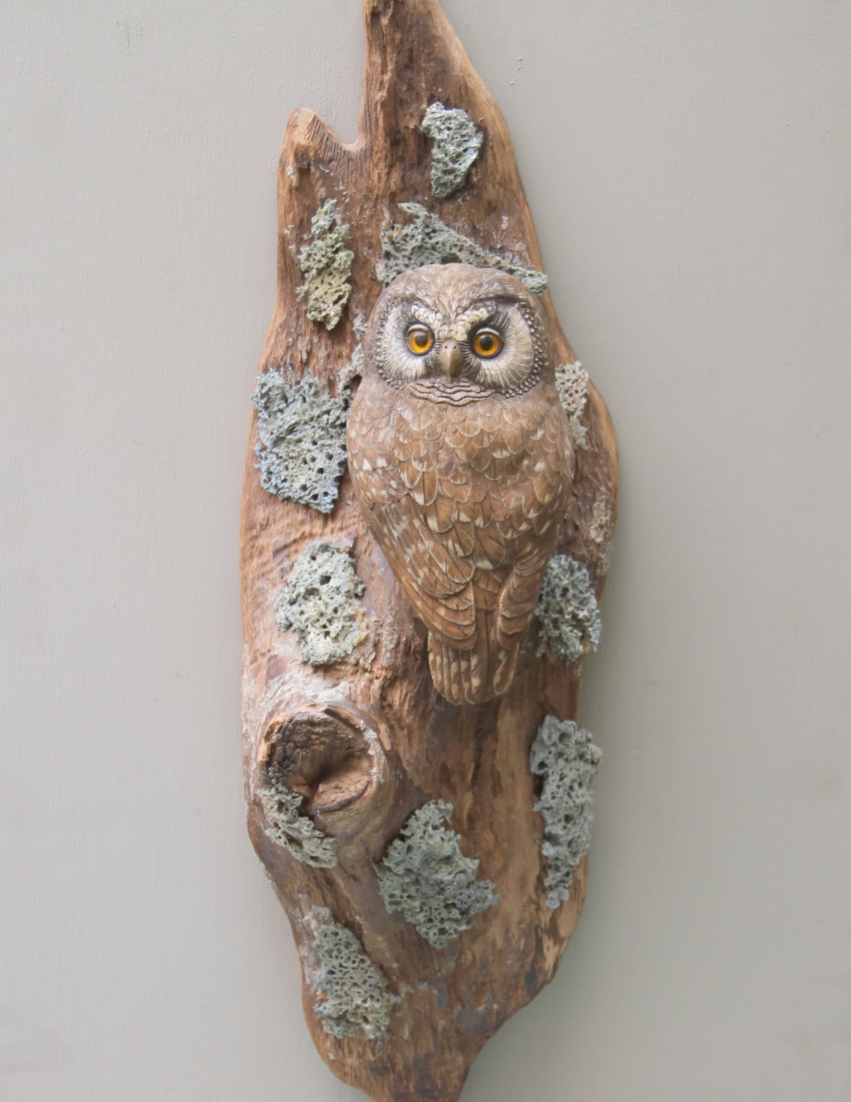 Vern s birds carvings stellers jay for sale boreal owl sold