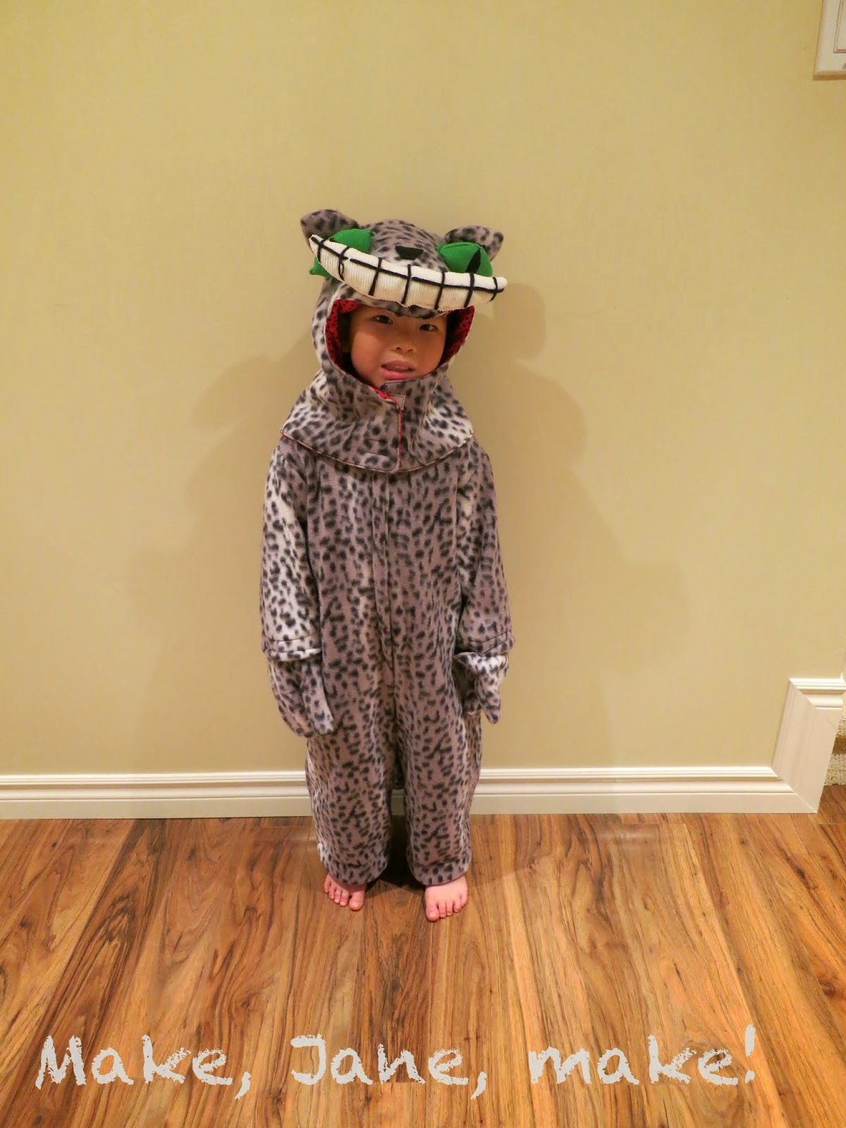 Cheshire cat diy costume child kids full body hood suit
