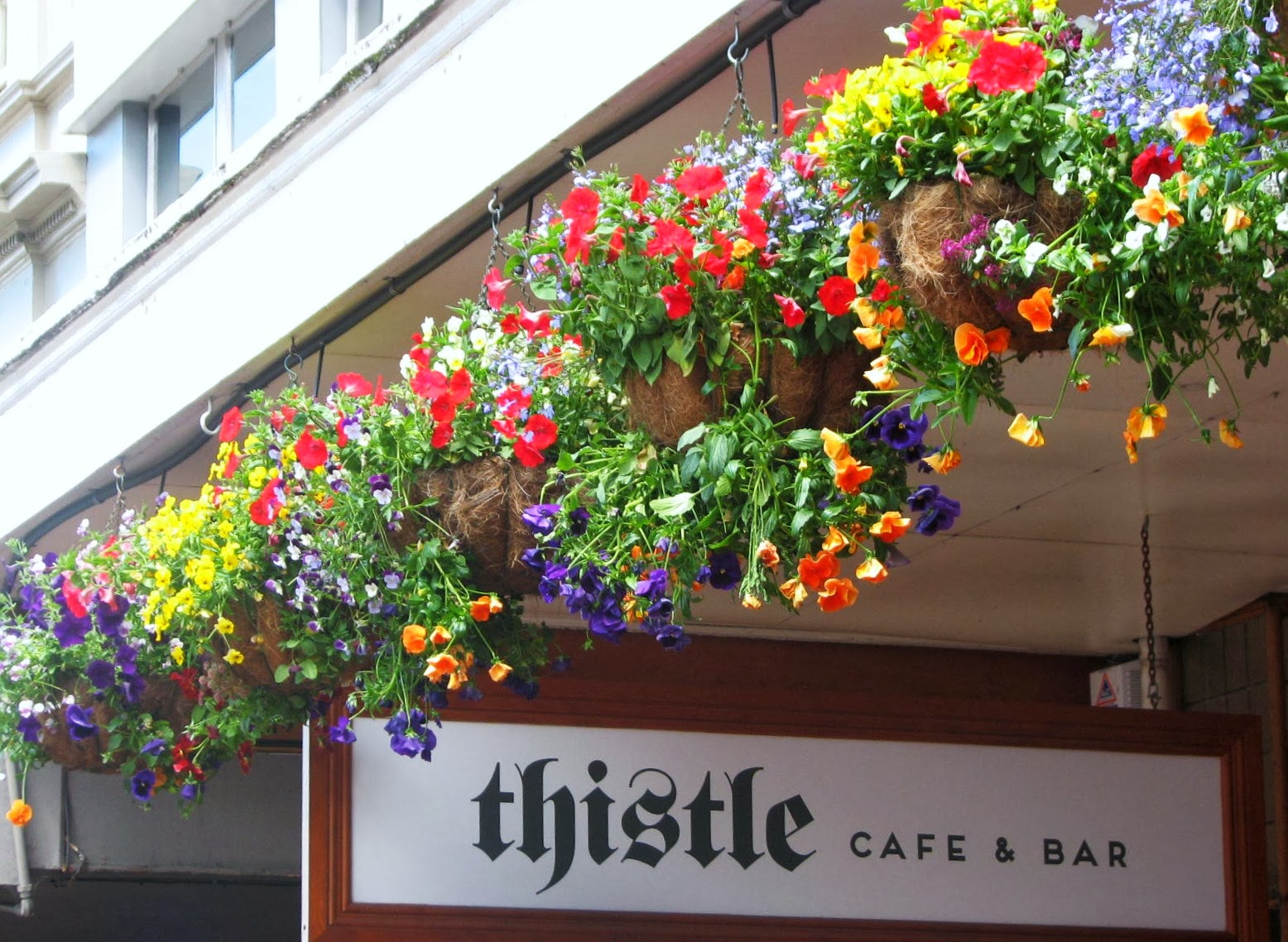 Under Hanging Baskets Of Flowers