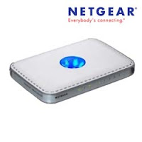 How to Use Netgear WPN824