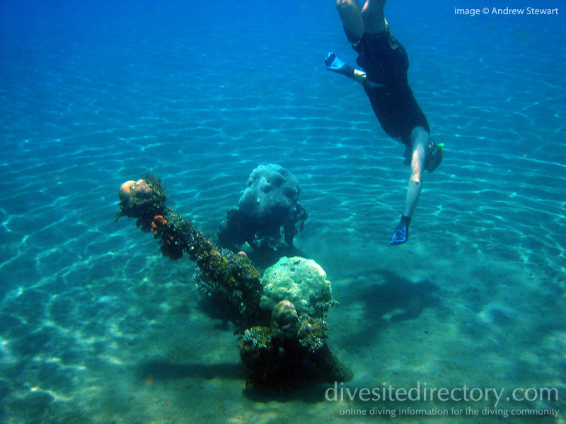 Travel top 10 list your online travel guide 10 best diving sites in bali indonesia - Best dive trips ...