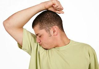 alfalfa bantu hilangkan bau badan