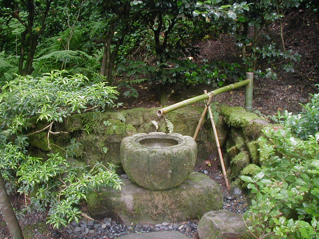 Harmony bamboo garden water fountain for Bamboo water garden