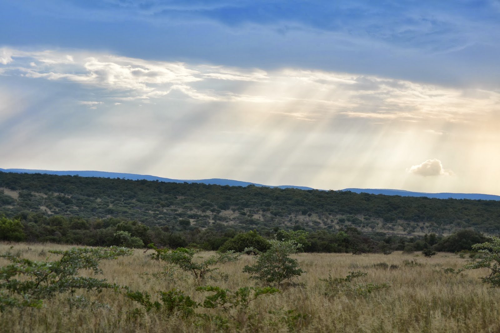 Sun rays through the clouds onto african landscape