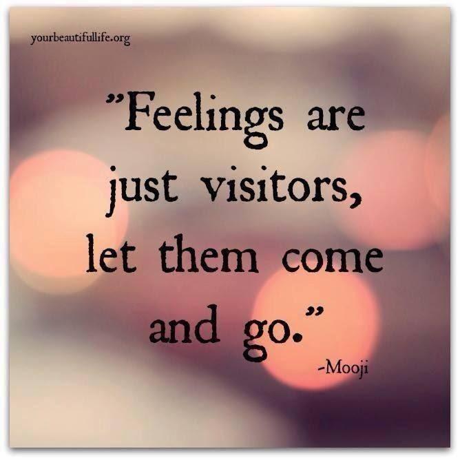 Perasaan apakah?