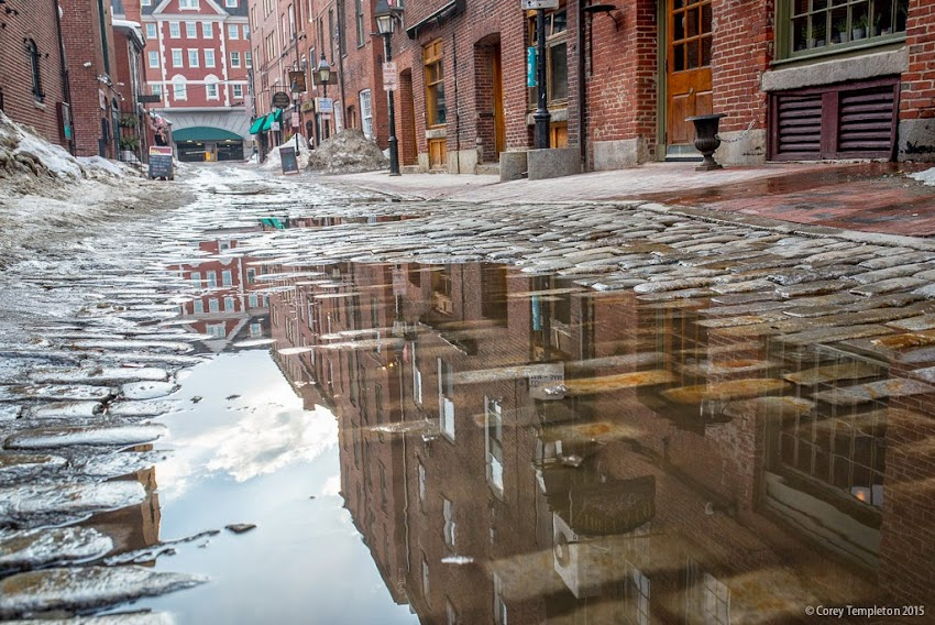 Portland, Maine March 2015 Puddle on Wharf Street cobblestones photo by Corey Templeton