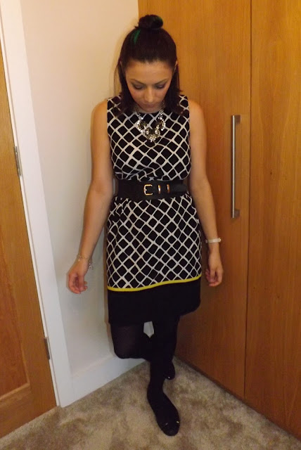 What Cat Wore   Grid Dress