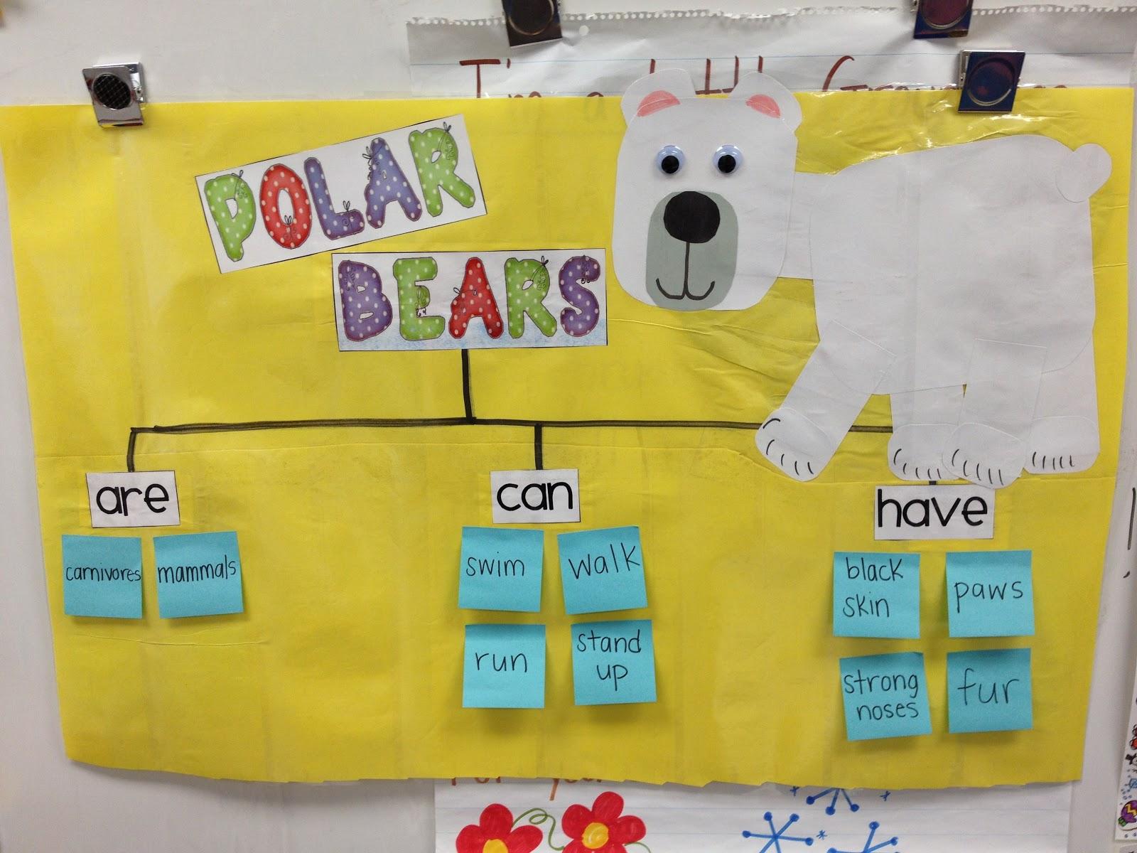 polarmap ms crowley's class polar animals!