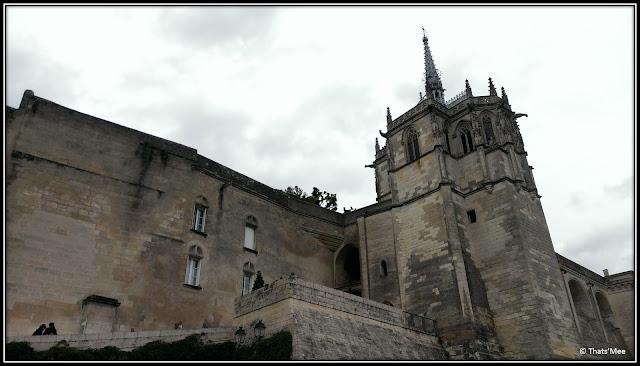 Chateau d'Amboise pays de la Loire monument patrimoine Unesco