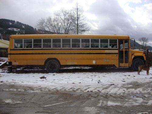 School Bus Conversion About Our School Bus Conversion