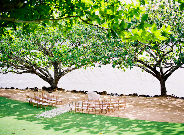 on topics specific to planning a destination wedding in Maui