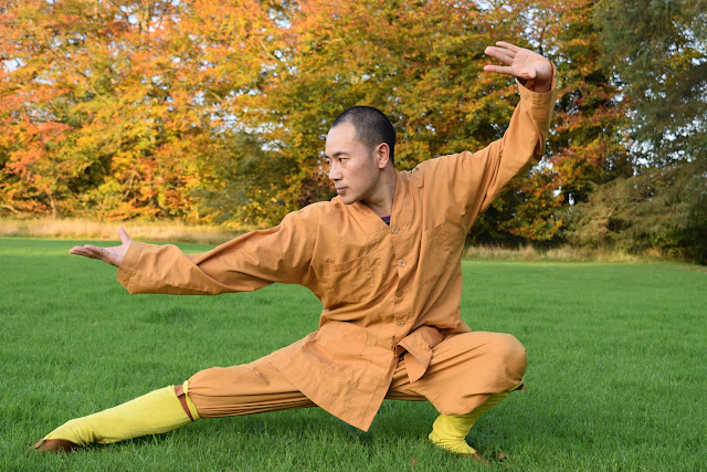 Kung Fu Shaolin Monks Monart Wexford