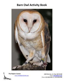 [Cover of the barn owl activity book]