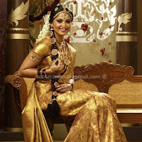 Anushka beautifull pictures in saree