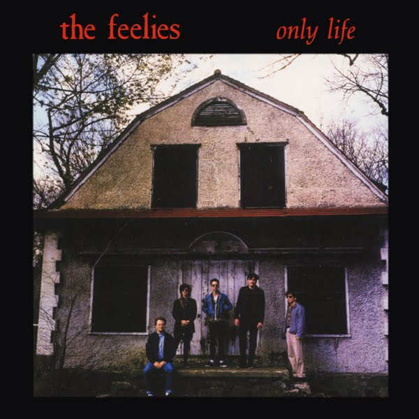 The Feelies - Only Lif...