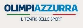 http://www.olimpiazzurra.com/2014/06/atletica-durissimo-magnani-chi-ha-fallito-in-coppa-saltera-gli-europei/