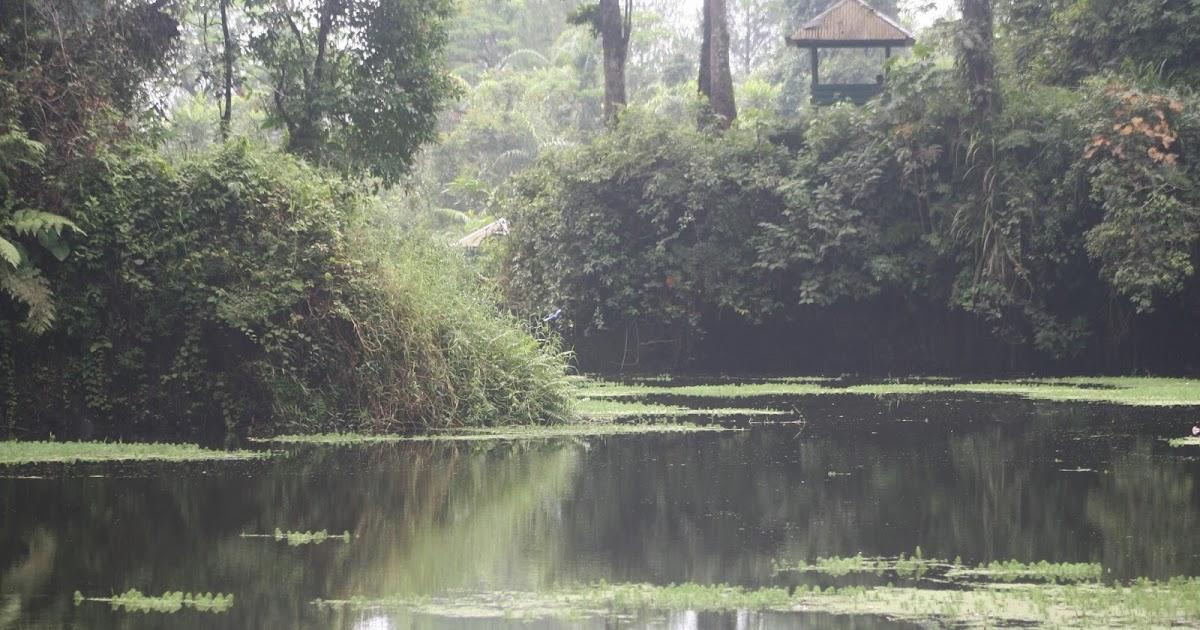 Hasil gambar untuk danau darungan