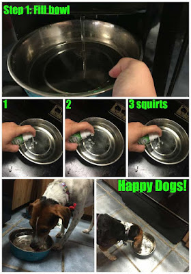 3 squirts of TropiClean Fresh Breath Drops in your dog's water bowl is all you need
