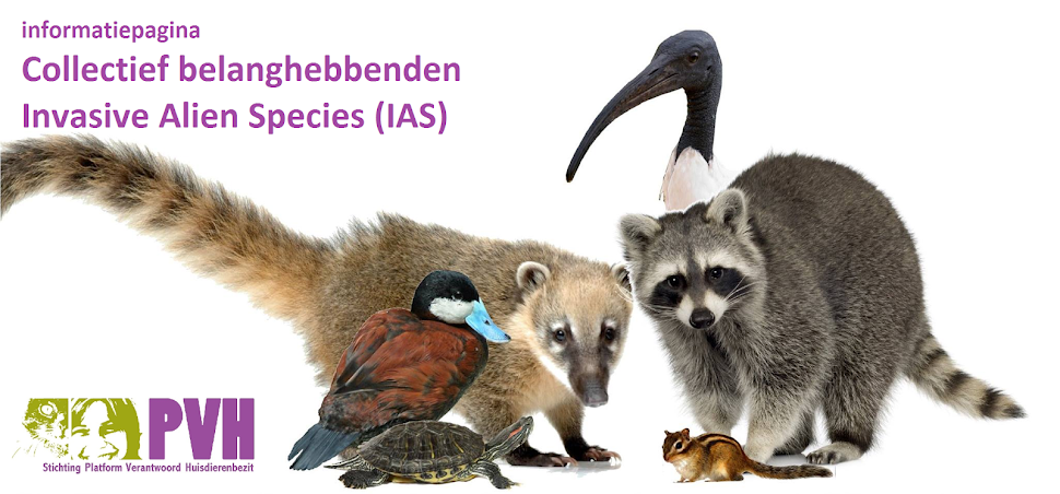 Collectief belanghebbenden Invasive Alien Species (IAS)