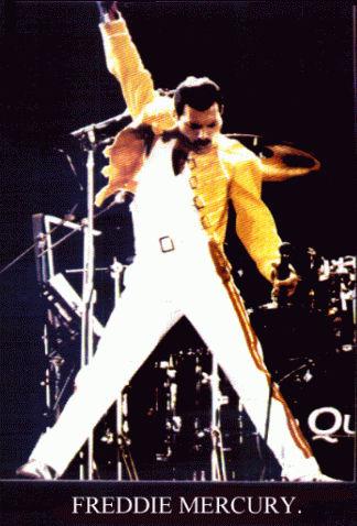 Queen Yellow Jacket
