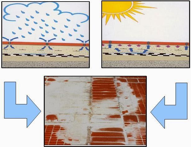 Esquematização-dos-ciclos-de-absorção-evaporação-de-água-e-aparecimento-de-eflorescências-através-das-juntas-de-mosaico-pintar-a-casa