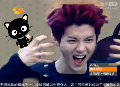 So EXO came out with their performance of  quot Wolf quot  in Chinese  Pretty    Xiumin Cute Happy Camp