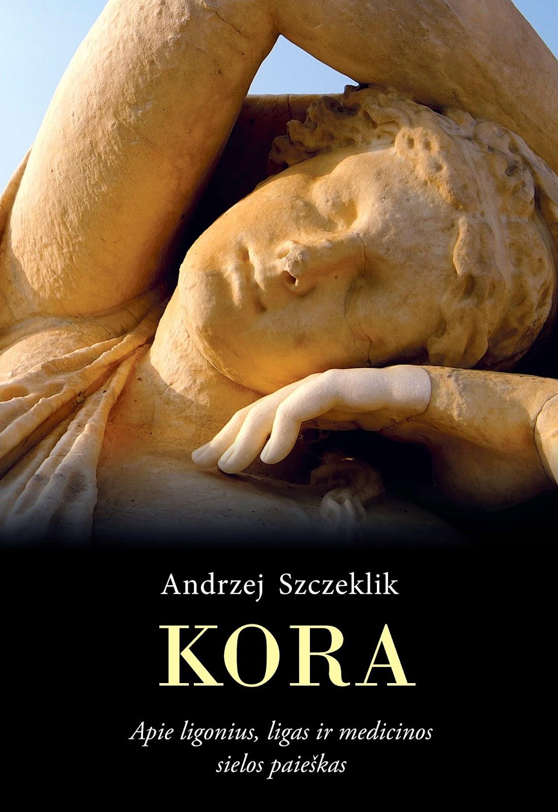 http://www.mintis.eu/sveikatai-dvasiai-groziui/97-kora-apie-ligonius-ligas-ir-medicinos-sielos-paieskas.html