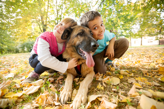 Czy pies to dobre zwierzę dla dziecka?