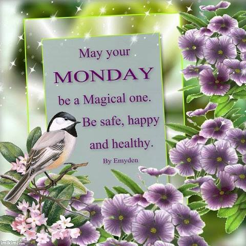 May your MONDAY be a Magical one