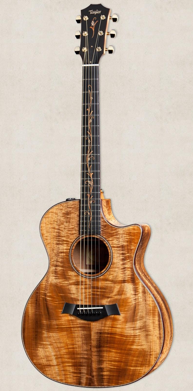 Taylor Guitars: Taylor...