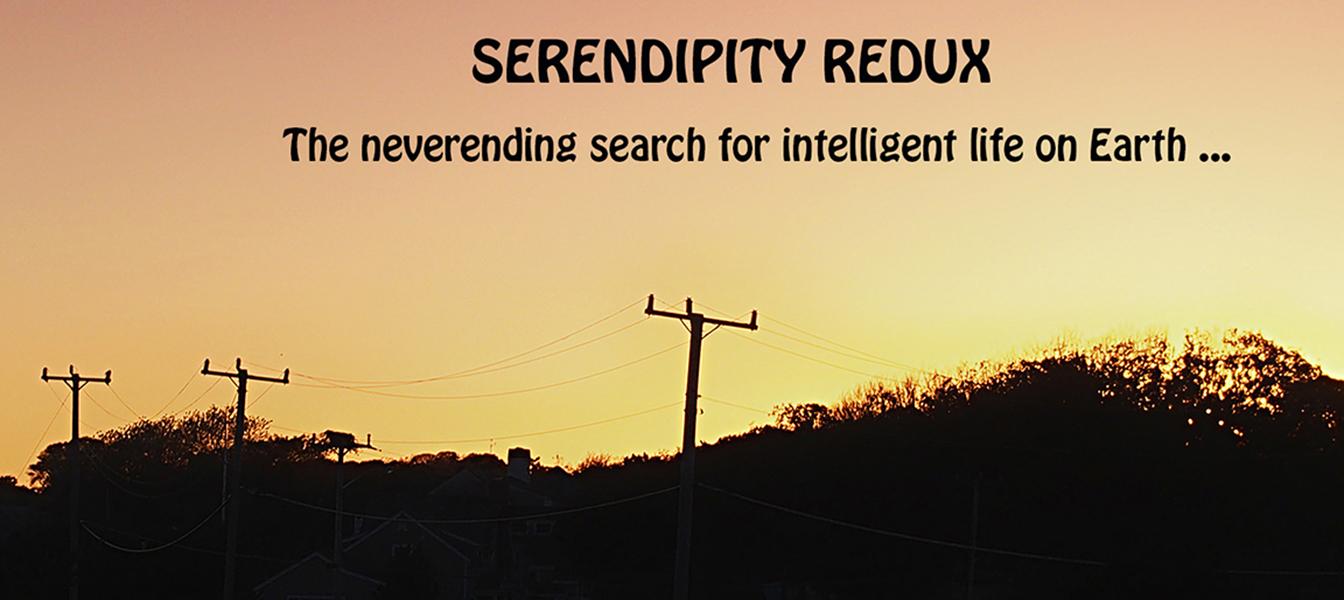 SERENDIPITY REDUX