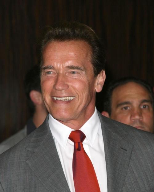 Idea Hairstyles Arnold 2012