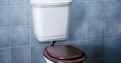 Modecor Toilet Suites Caroma Vintage Connector Toilet Suite