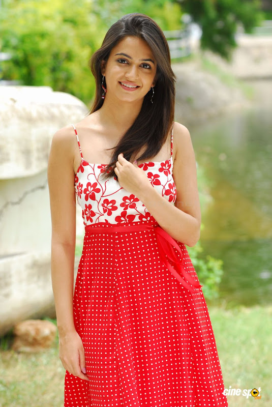Kriti Kharbanda  south actress hot sexy gallery