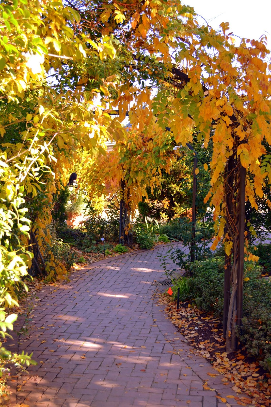 Mille Fiori Favoriti: The Denver Botanic Garden in Autumn