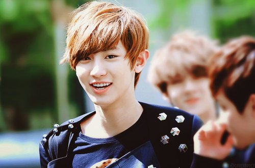 21677 park chan yeol - photo #23
