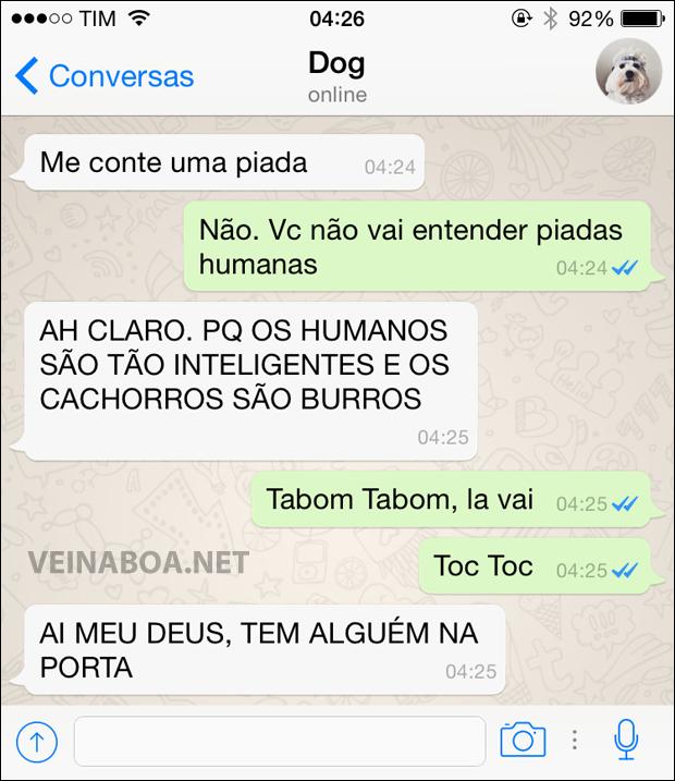 08 Mensagens se meu cachorro tivesse Whatsapp - Gnvision - 2015 - 2016 6