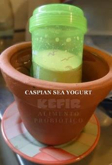 Iogurte Caspio protegido do calor, refresque dentro de potes de barro com água fresquinha e garanta uma fermentação do iogurte.