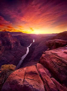 Grand Canyon (Best Honeymoon Destinations In USA) 2