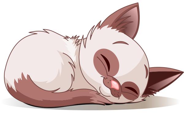 Cat Nap Image