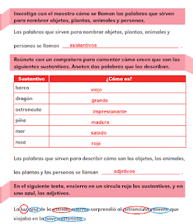 Respuestas Apoyo Primaria Español 2do grado Bloque 1 lección 6 Sustantivos y adjetivos