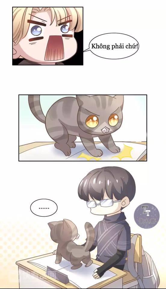 Dưới Móng Vuốt Mèo - Chap 21