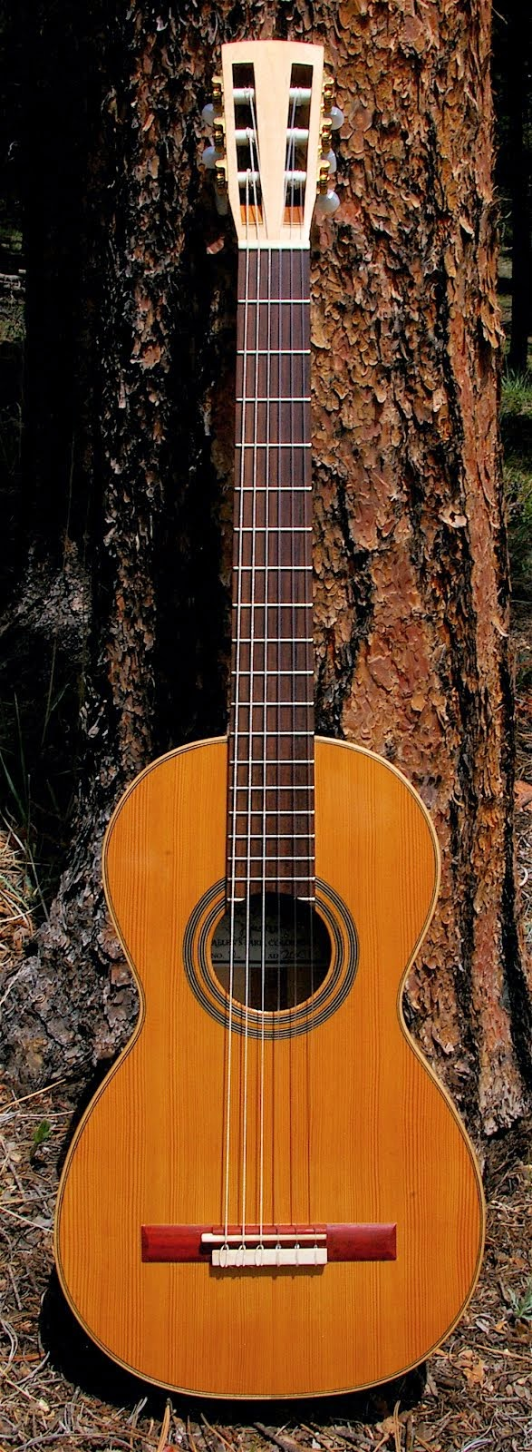 For Sale: 1816 Jose Martinez Parlor Guitar Model
