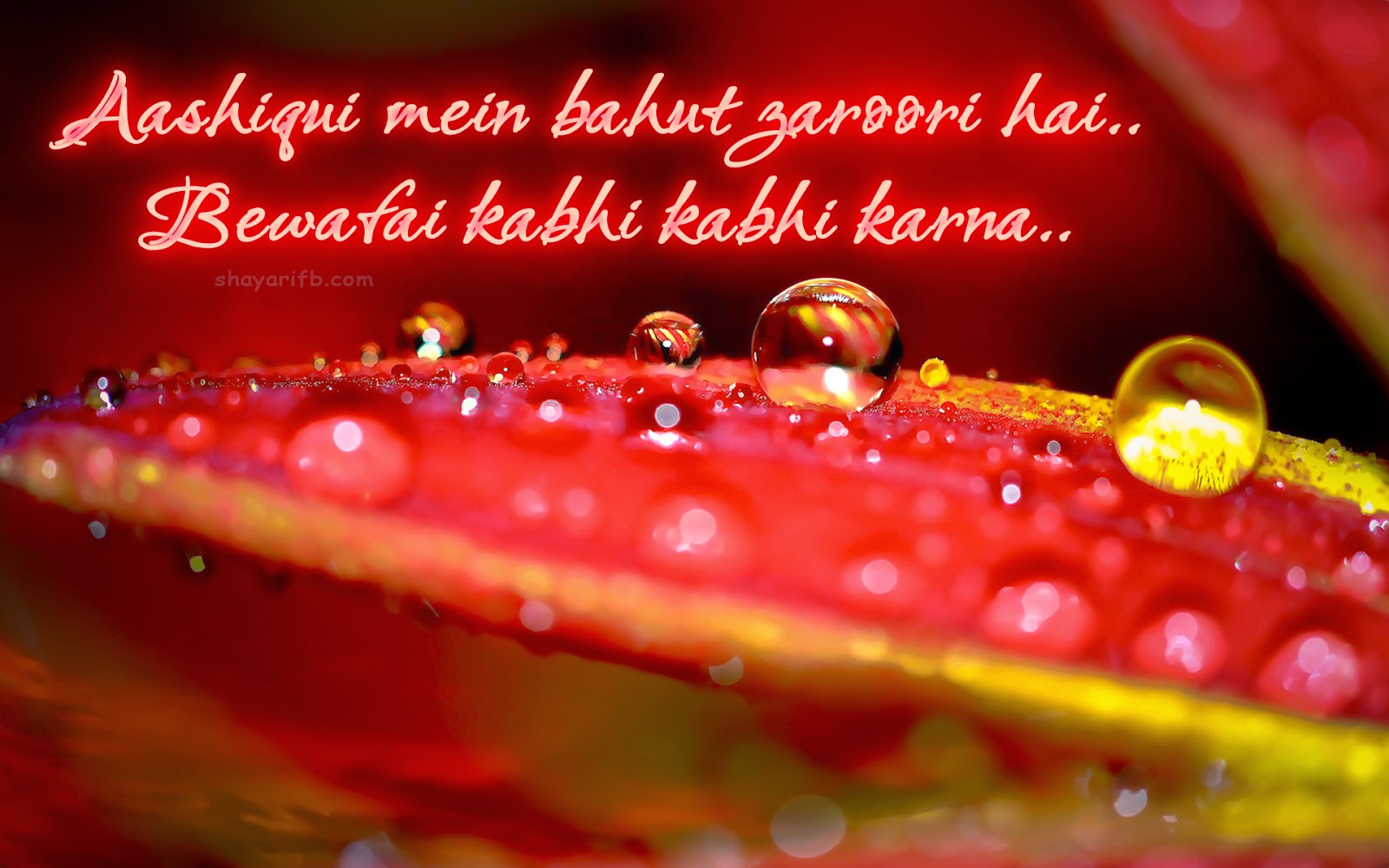 Love shayari Best shayari HIndi Aashiqui wallpaper HDLove Shayari and Sad Shayari