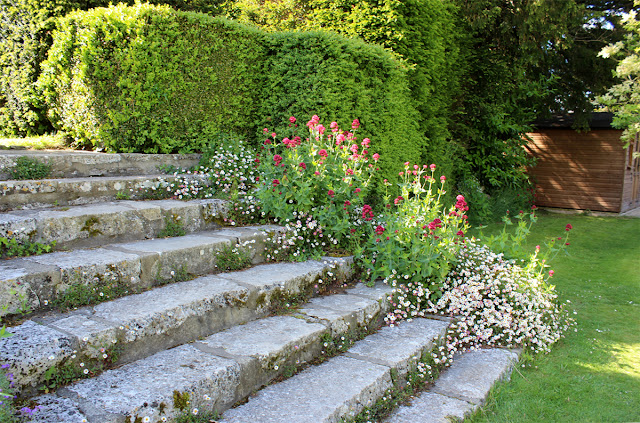 flower-steps-green-sunny-garden-kingston-maurward-todaymyway.com