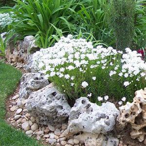 Decoraciones y modernidades modernos jardines decorados for Piedras para jardin