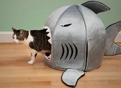 Cama tiburón para mascotas