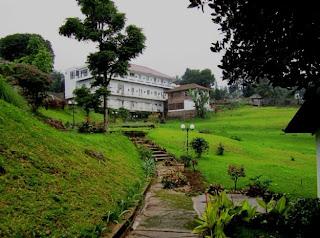 Villa BungaBunga di Perkebunan Teh Puncak
