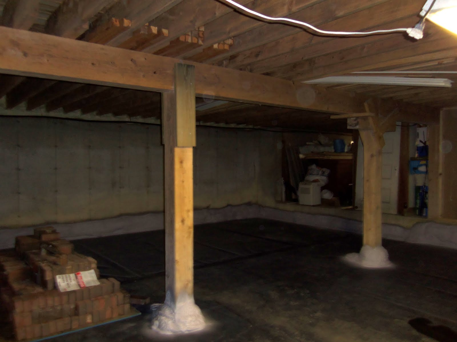 basement and we have chosen to name it the root cellar pub both to
